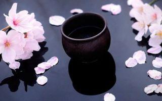 Научим,как пить саке правильно — 2 способа употребления