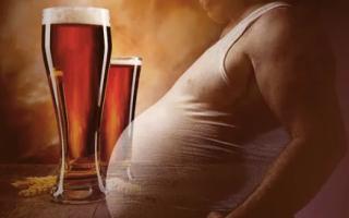 Гормоны в пиве — миф или реальность?
