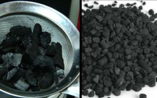 Используем кокосовый уголь для очистки самогона правильно