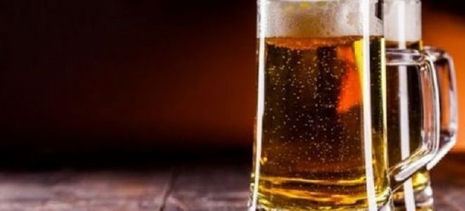 Рецепты домашнего пива в домашней пивоварне домашние пивоварни киев купить