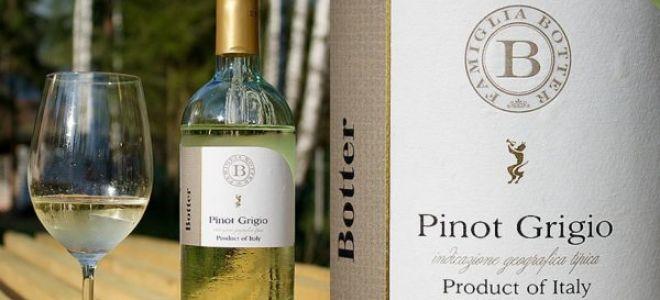 Вино Пино Гриджио (Pinot Grigio)