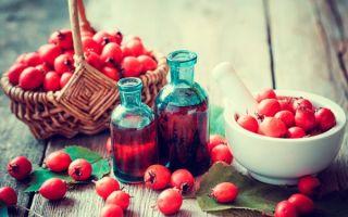 Лекарственная настойка боярышника — польза и вред, рецепт приготовления на водке