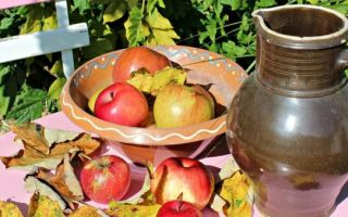 Вино из ранеток в домашних условиях — 5 лучших рецептов