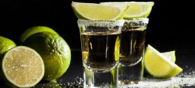 Научим, как пить текилу правильно