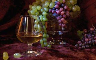 Секреты виноделов: из какого винограда делают коньяк — описание лучших сортов