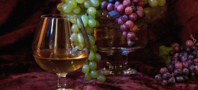 Секреты виноделов: из какого винограда делают коньяк