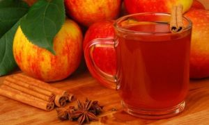 Простой рецепт приготовления сидра в домашних условиях из яблок