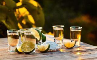 Как сделать текилу в домашних условиях — рецепты из самогона