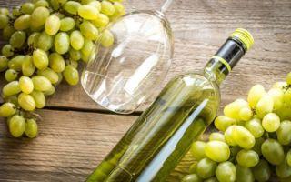 Вино Совиньон Блан (Sauvignon Blanc) — терпкий напиток с выраженными травянистыми нотками