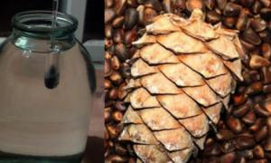 Классический рецепт самогона на кедровых орешках в емкости 3 литра