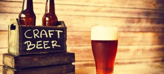 Что такое крафтовое пиво (craft beer)