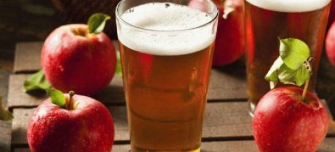 Все тонкости приготовления самогона из яблок в домашних условиях