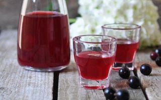 Настойки из черной смородины на самогоне водке и спирту — 7 простых рецептов