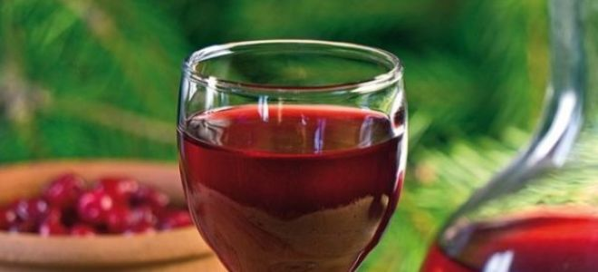 Вино из клюквы в домашних условиях