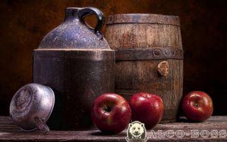 Как сделать самогон из яблок в домашних условиях — простой, пошаговый рецепт