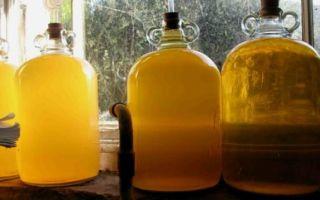Как сделать самогон из меда в домашних условиях — подробный рецепт приготовления