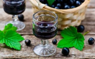 Ликер из черной смородины в домашних условиях — простые рецепты