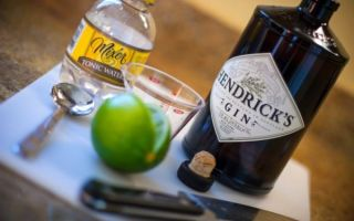 Как и с чем пьют джин — правильные способы и закуска