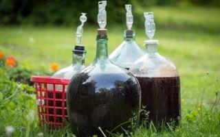 Вино не бродит — что делать в этом случае и как спасти напиток?