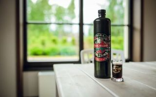 Как пить алкогольный бальзам — советы по употреблению напитка