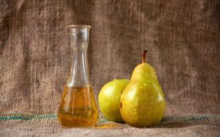 Немецкий фруктовый самогон Шнапс (Shnaps) — описание и 4 простых рецепта приготовления