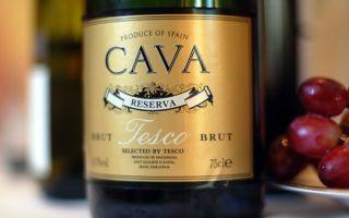 Испанское шампанское Кава (Cava) — самобытное игристое вино