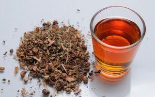 Рецепт приготовления настойки на калгане на самогоне — польза и вред