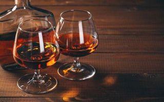 Как выбрать хороший коньяк — правила элитного напитка
