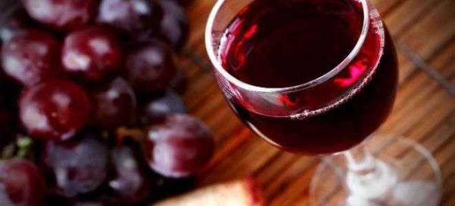 Готовим вино из винограда в домашних условиях