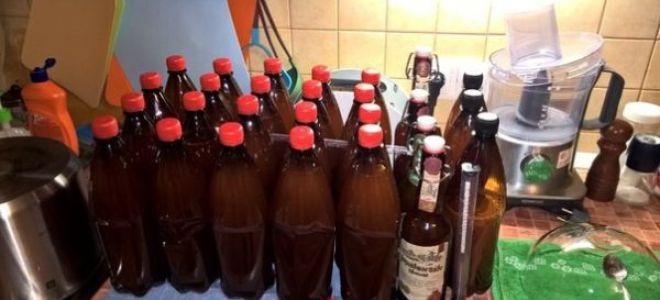 Как сделать пиво из концентрата в домашних условиях