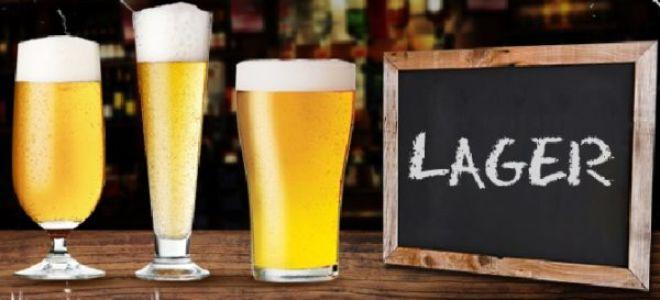 Рожденное в холодных подземельях, пиво Лагер (Lager Beer)