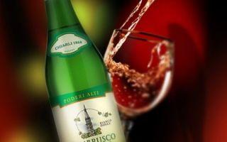 Игристое вино Ламбруско — легендарный итальянский напиток