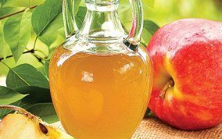Как сделать брагу из яблок для самогона — лучшие рецепты приготовления