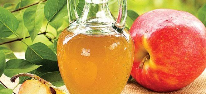 Как сделать брагу из яблок для самогона