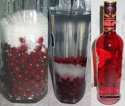 водка и красная смородина