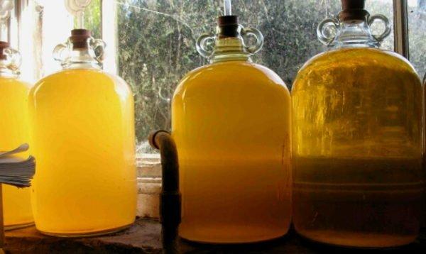 брожение самогона из меда