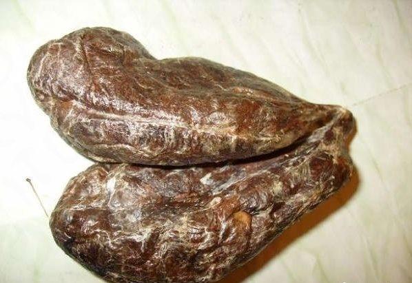 сушенная бобровая струя