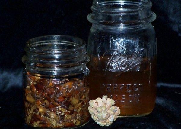 Настойка на кедровых орешках на водке, спирту или самогоне