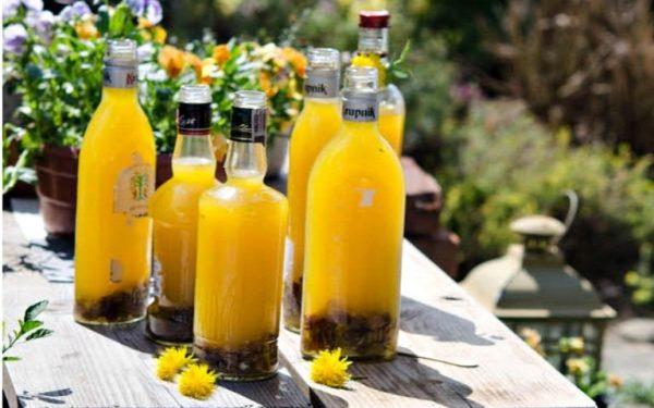 желтое вино из одуванчиков
