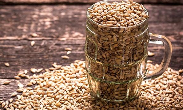 Самогон из зерна в домашних условиях без добавления дрожжей 500