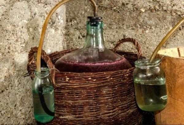 сколько должно играть вино из изабеллы