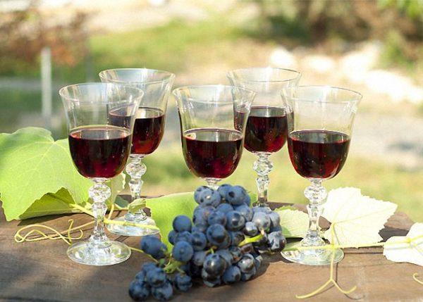Правильное приготовление вина изабелла
